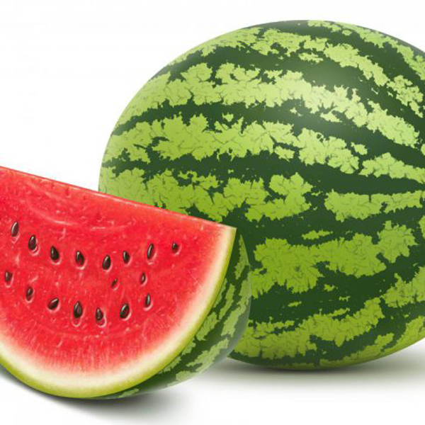 vetton_ru_watermelon-4-7733x5155-800x533.jpg